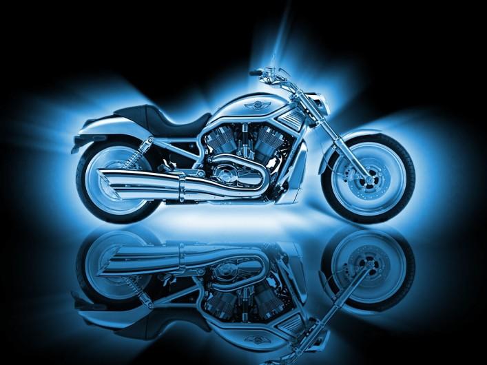 HarleyVRod