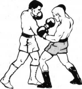 boksnedir